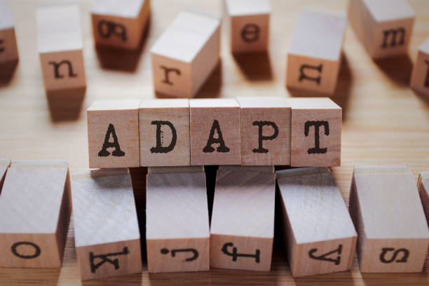Adapt Word In Wooden Stamp Cube stock photo