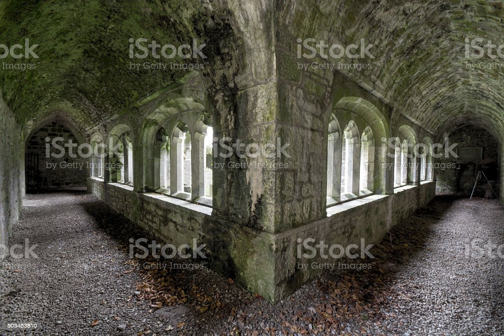 Adare Cloisters stock photo