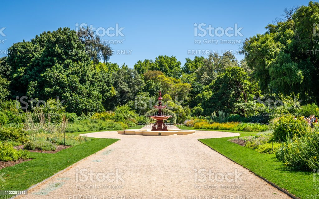 Adelaide botanische tuin uitzicht met steegje groene natuur en fontein in Adelaide SA Australië foto