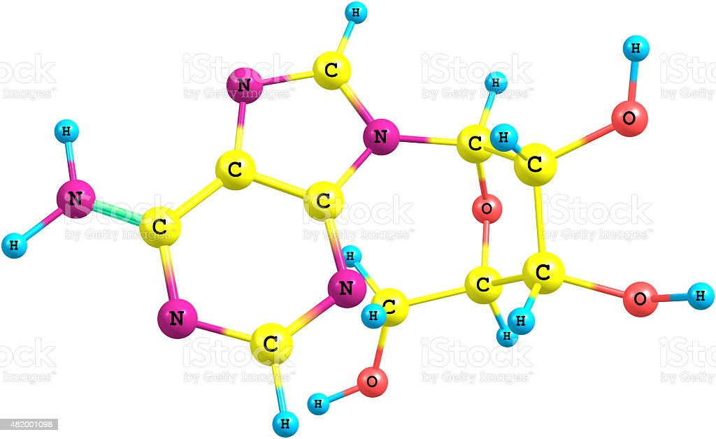 Adenosine molecule isolated on white stock photo