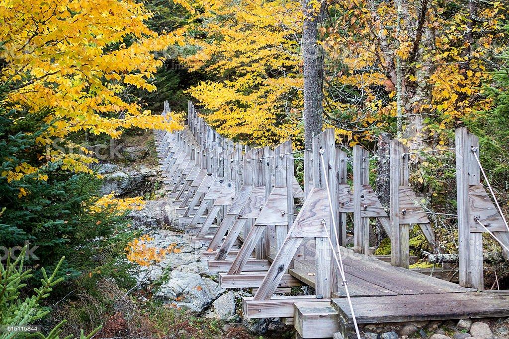 Adirondack Bridge in Autumn stock photo