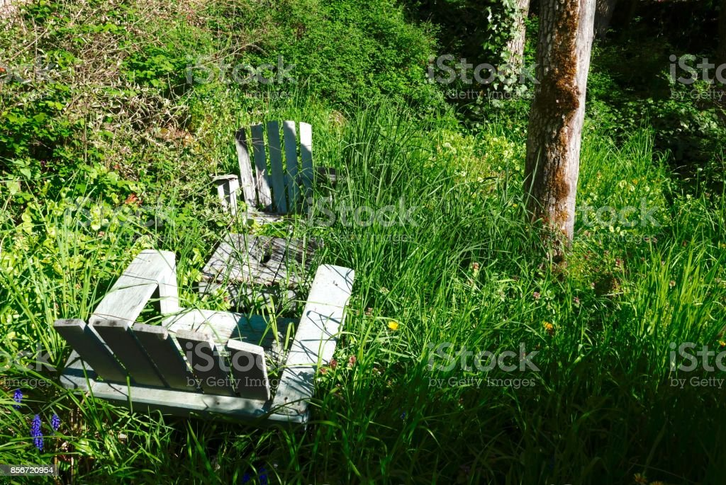 Adirondack chairs in an overgrown garden stock photo