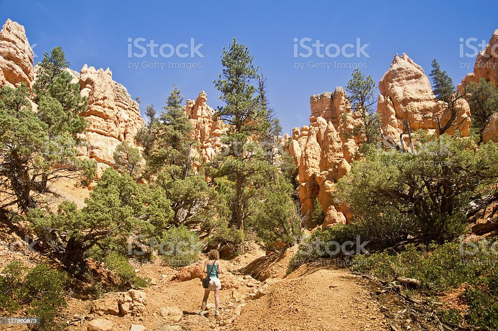 Admiring Geology royalty-free stock photo