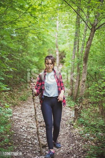 A view of a young adventurer in the woods, using a hiking stick to push through the woods and climb the bumpy rocks on the way.