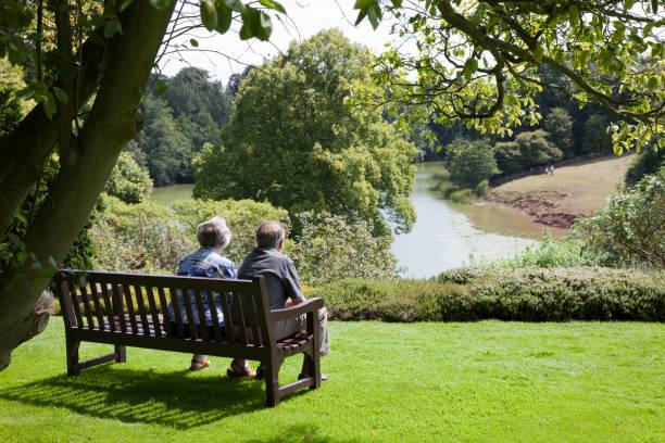 Admiring the View -XXXLarge stock photo