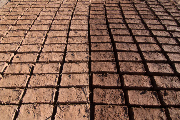 Adobe bricks drying in the sun for construction in Ouarzazate forming a pattern stock photo