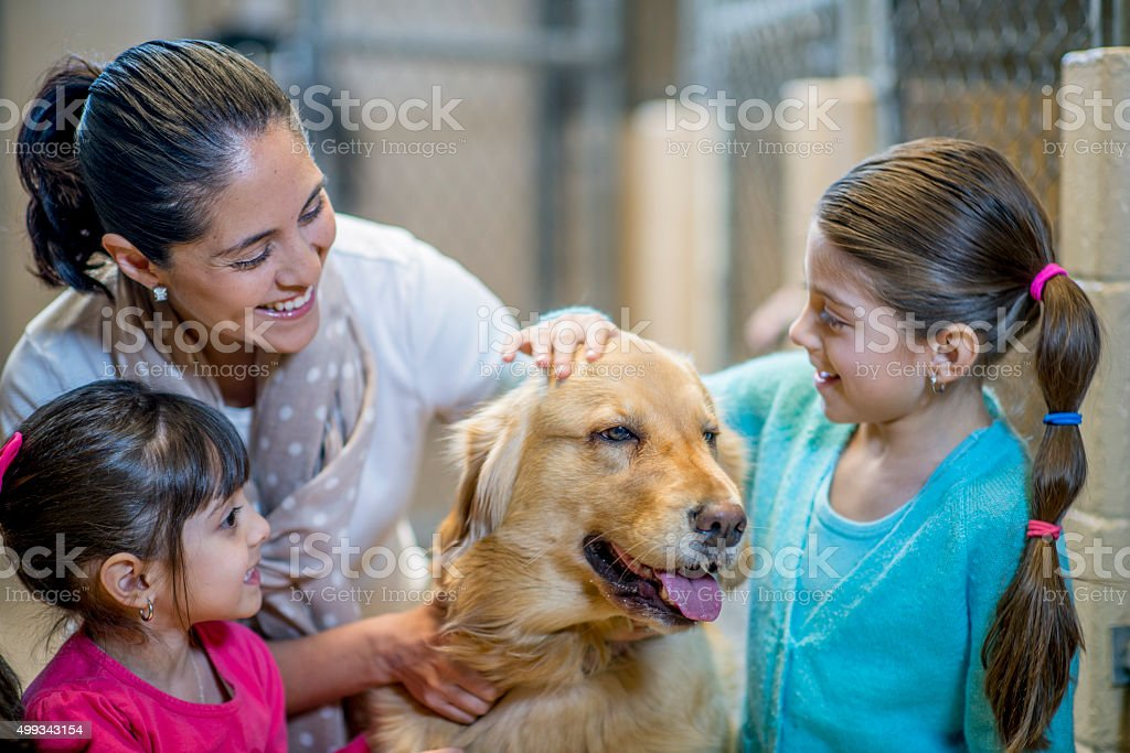 A mother and her daughters are at the pound to adopt a dog. They are...