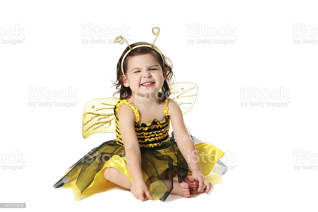 Adorable Bee royalty-free stock photo