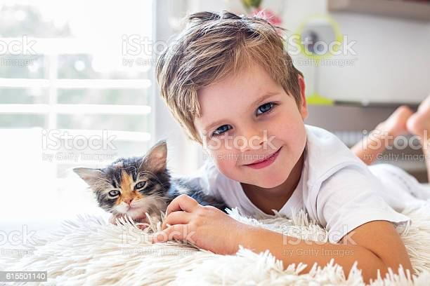 Adorable boy and kitten resting together picture id615501140?b=1&k=6&m=615501140&s=612x612&h=dm5pxzr1wxv025hjrncvcmhcr8lnijjrjqxvplsjvdo=