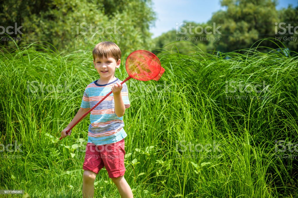 Adorable Caucasian kid playing with scoop-net on the meadow on warm and sunny summer or spring day. stock photo