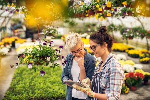 entzückende charmante moderne floristen frau zeigt eine liste von blumen auf einem tablet, das neugierig attraktive blonde kundin in einem gewächshaus. - gartenbau betrieb stock-fotos und bilder