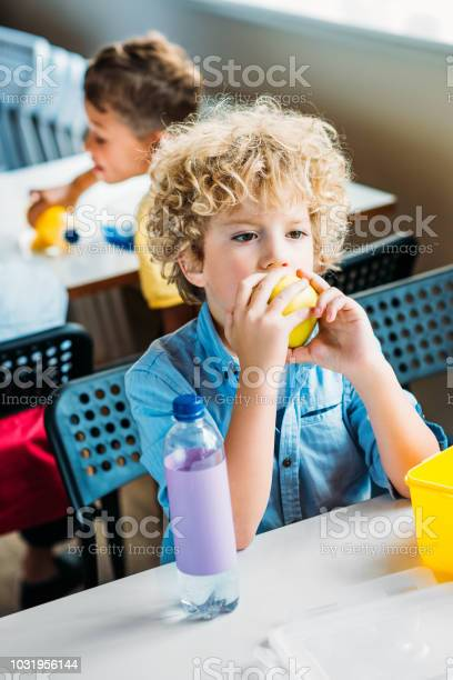 Adorable curly schoolboy taking lunch together at school cafeteria picture id1031956144?b=1&k=6&m=1031956144&s=612x612&h=obw3qjrkzcdrznrugesfep hsojsqxwcxn3hpys5koq=