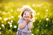 Adorable cute little baby girl blowing on a dandelion flower on the nature in the summer. Happy healthy beautiful toddler child with blowball, having fun. Bright sunset light, active kid