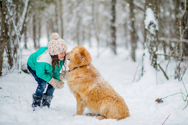 Adorable girl and dog in winter picture id1064843602?b=1&k=6&m=1064843602&s=612x612&w=0&h=hqahku64ipu9 uqw6h8somyj4f2hynrkcinunal7g5o=
