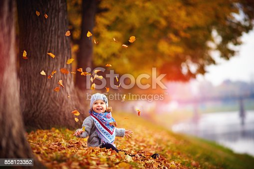 istock adorable happy baby girl throwing the fallen leaves up, playing in the autumn park 858123352