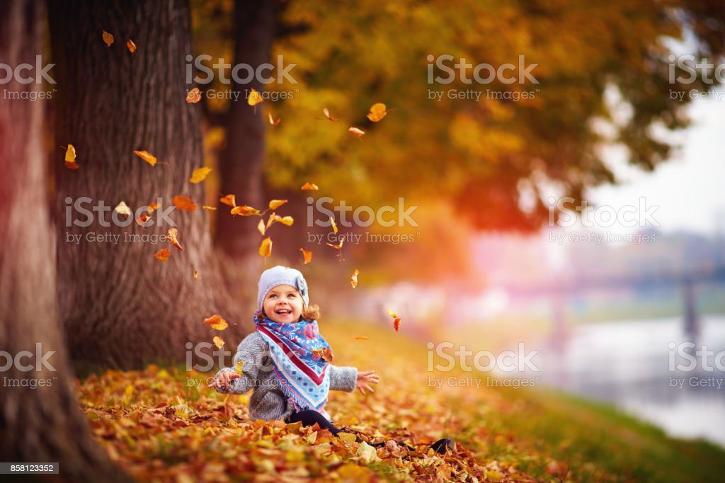 adorable happy baby girl throwing the fallen leaves up, playing in the autumn park стоковое фото