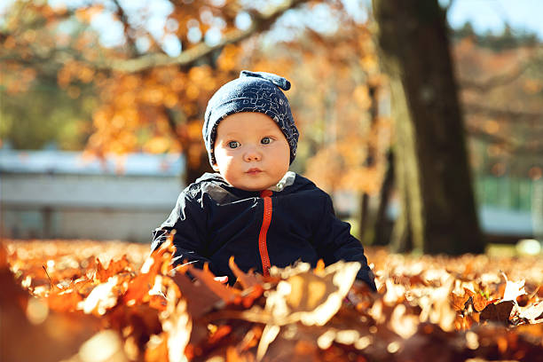 Adorable little baby child in autumn park with yellow leaves. - foto de stock