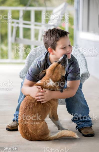 Adorable little boy bonds with his dog on front porch picture id1057317584?b=1&k=6&m=1057317584&s=612x612&h=yyka6 nbg8pyam3qnqwcojrrq2ghiyopsrvlakqekqy=