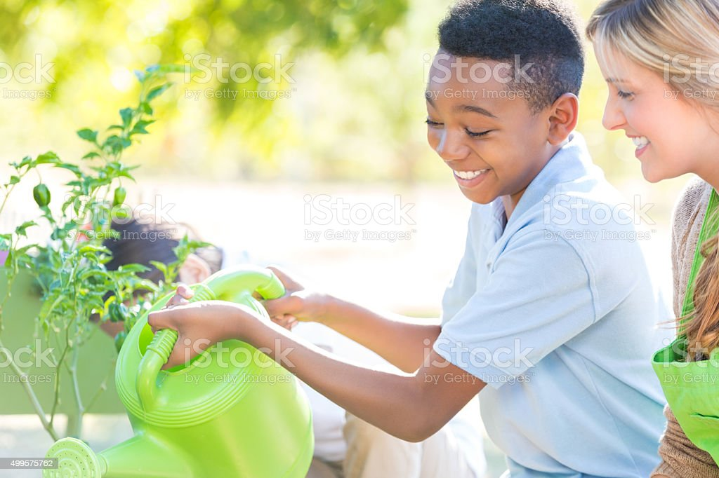 Adorable little boy watering plants in school garden stock photo