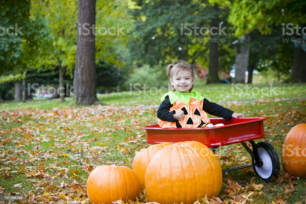 Adorable Little Girl in Halloween Pumpkin Costume on Fall Day royalty-free stock photo