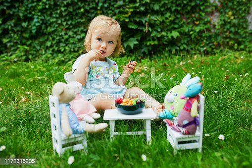 Adorable little girl playing with soft toys in park or garden and making them dinner with toy fruits and vegetables. Role games for little kids