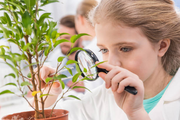 adorable little girl with magnifying glass and plant in laboratory stock photo