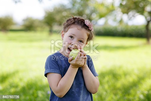 istock Adorable little preschool kid girl eating green apple on organic farm 840783726