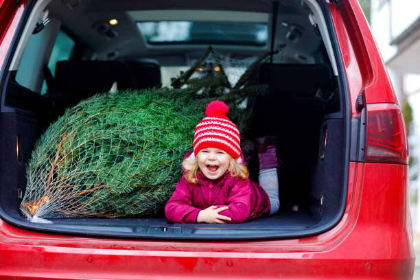 Adorable little toddler girl with Christmas tree inside of family car. Happy healthy baby child in winter fashion clothes choosing and buying big Xmas tree for traditional celebration. stock photo