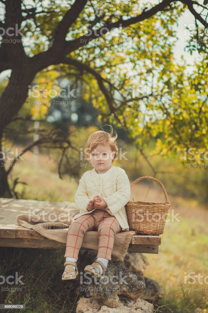 Adorable pretty baby girl with blond red hair wearing ivory colour white sweater enjoy life time in city suburb village on wooden stage with basket ped crib full of fresh yellow red apples happy smile stock photo
