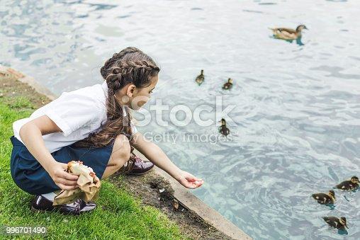 adorable schoolgirl feeding ducklings in pond