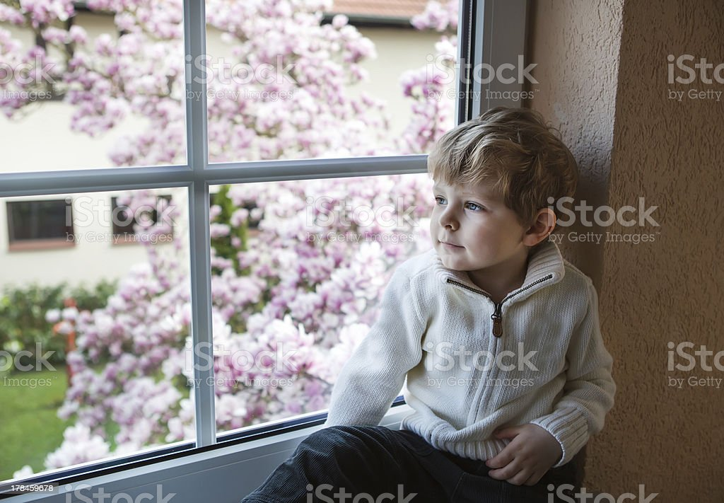 Adorable toddler boy looking out of the window royalty-free stock photo
