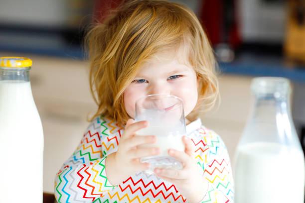 Das kleine Mädchen, das Kuhmilch zum Frühstück trinkt, ist sehr gut. Niedliche Baby-Tochter mit vielen Flaschen. Gesundes Kind, das Milch als Gesundheitskalziumquelle hat. Kind zu Hause oder Kindergarten am Morgen. – Foto