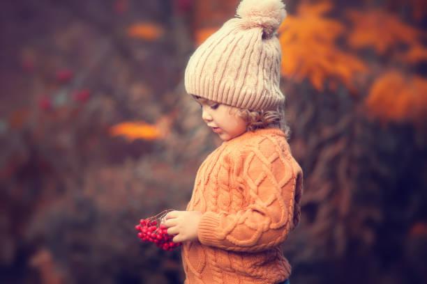 Adorable toddler girl portrait on beautiful autumn day. stock photo