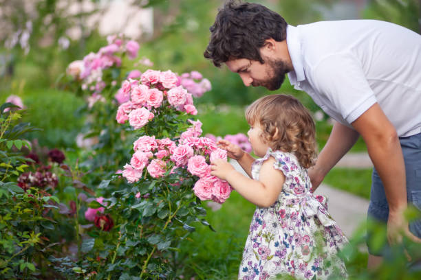Adorable toddler girl smelling flowers. stock photo