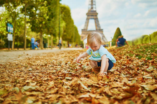 Adorable toddler girl walking on fallen autumn leaves near the Eiffel tower stock photo