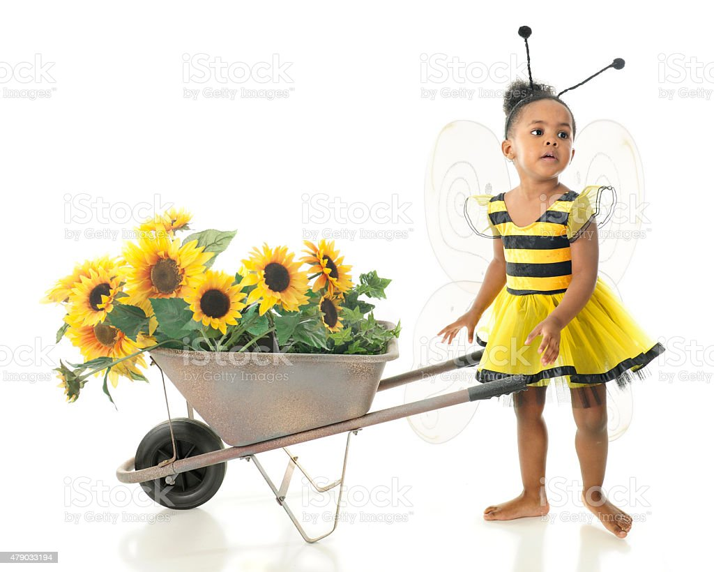 Adorable Worker Bee stock photo