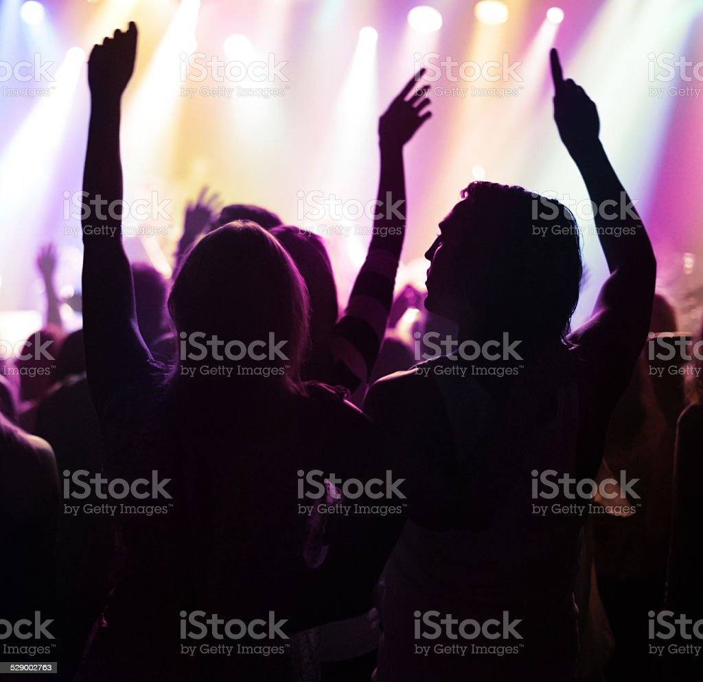 Adoring music fans stock photo