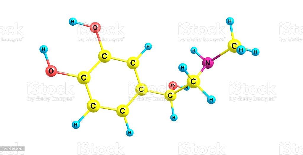 Adrenalina Estructura Molecular Aislado Sobre Blanco Foto De
