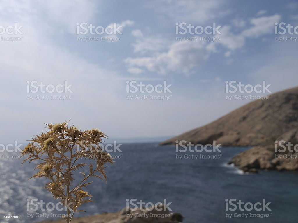 adriatic coastline royalty-free stock photo