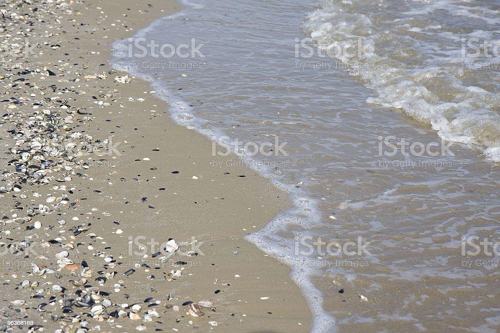 Adriatic sea shore royalty-free stock photo