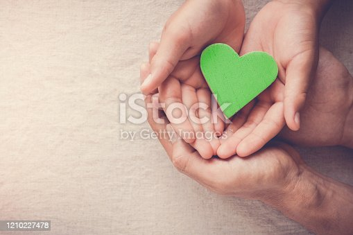 Adult and child hands holding green heart, Vegan vegetarian, sustainable living, healthy wellness, CSR social responsibility concept, world environment day, world health day