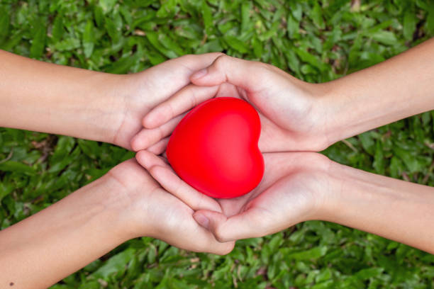 adult and child hands holding red heart on the grass, health care, donate and family insurance concept,world heart day, world health day,