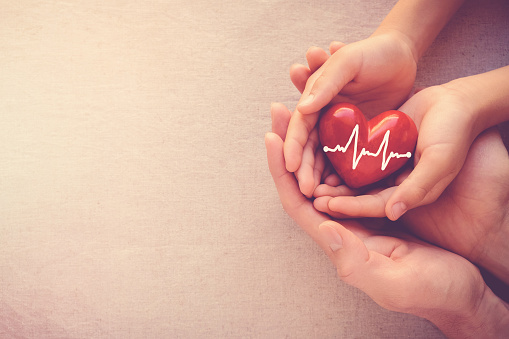 adult and child hands holding red heart with cardiogram, health care love and family concept