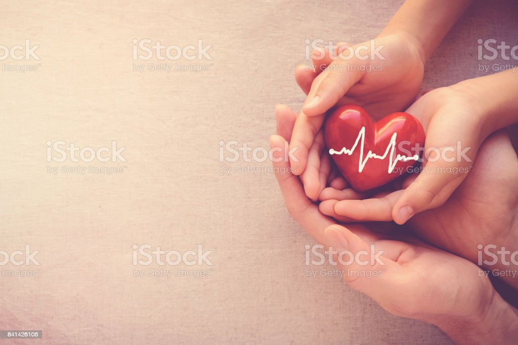adult and child hands holding red heart with cardiogram, health care love and family concept - foto stock