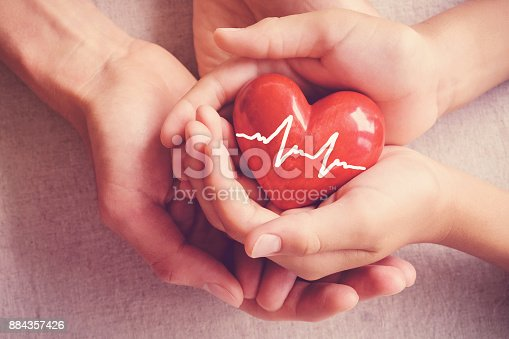 istock adult and child hands holiding red heart, adult and child hands holiding red heart, health care, organ donation, family insurance concept 884357426