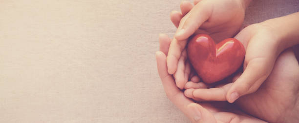 adult and child hands holiding red heart, heart health and donation concept - heart stock pictures, royalty-free photos & images