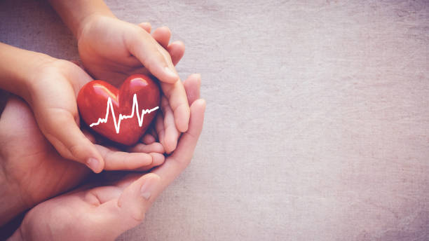 adult and child hands holiding red heart with cardiogram, health care love and family concept - organ donation stock pictures, royalty-free photos & images