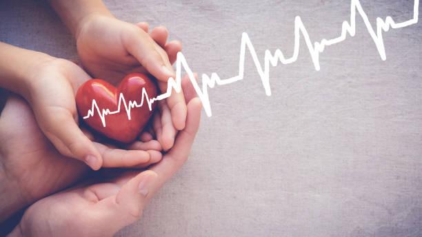 adulto e criança coração de holiding vermelho de mãos com eletrocardiograma, cuidados de saúde amor e conceito de família - foto de acervo
