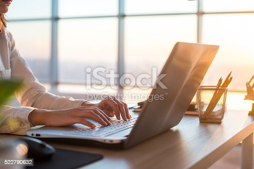 istock Adult businesswoman working at home using computer, studying business ideas 522790632