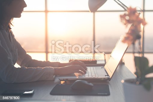 istock Adult businesswoman working at home using computer, studying business ideas 546797800